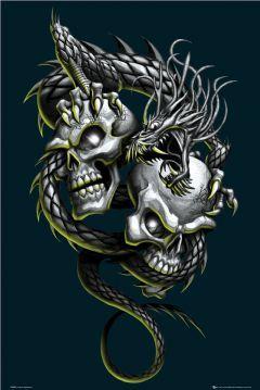 Скачать картинку Dragon Skulls на телефон бесплатно.