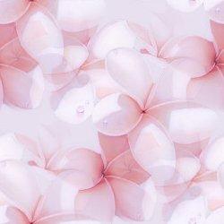 http://dl8.glitter-graphics.net/pub/482/482328pee2ww1jd7.jpg
